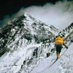 泰金代理獲利攀顛峰-泰金888